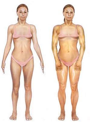 Construire du muscle sans graisse