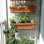 My balcony vegetable garden in the sun