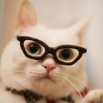"""J'ai lu : """"Voir clair, comment abandonner ses lunettes"""""""