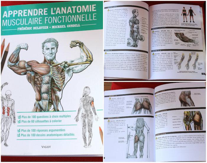 Livre Apprendre l'anatomie musculaire fonctionnelle