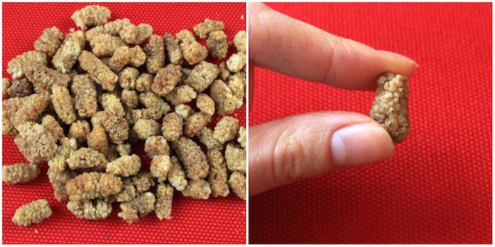 Mulberries séchées